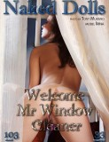 Welcome Mr. Window Cleaner