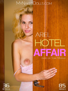 Hotel Affair