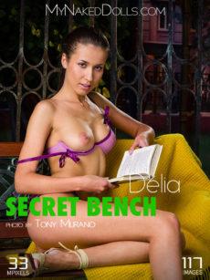 Secret Bench